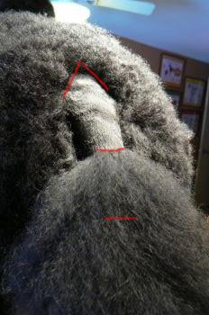 Zin tail markout