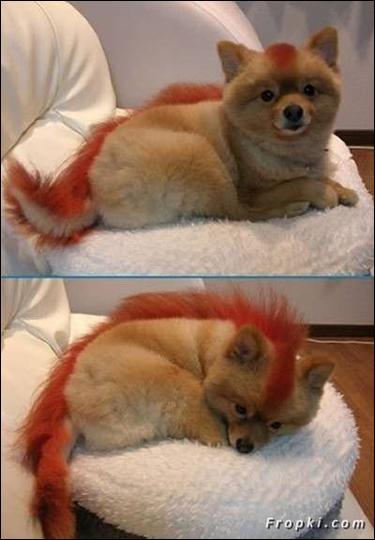 Hairdo07