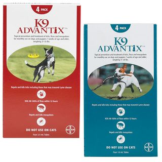 Advantage Flea and Tick Treatment
