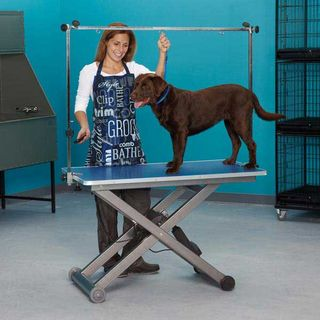 Master Equipment Electric Ease Grooming Table