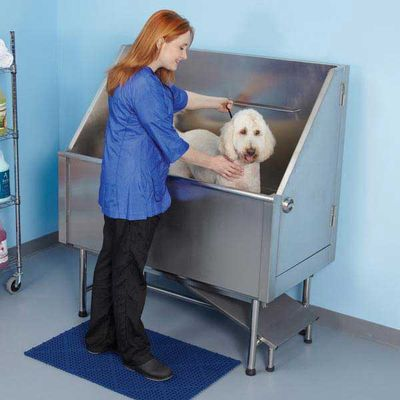 Dog in Tub